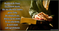 PSALM 16 23