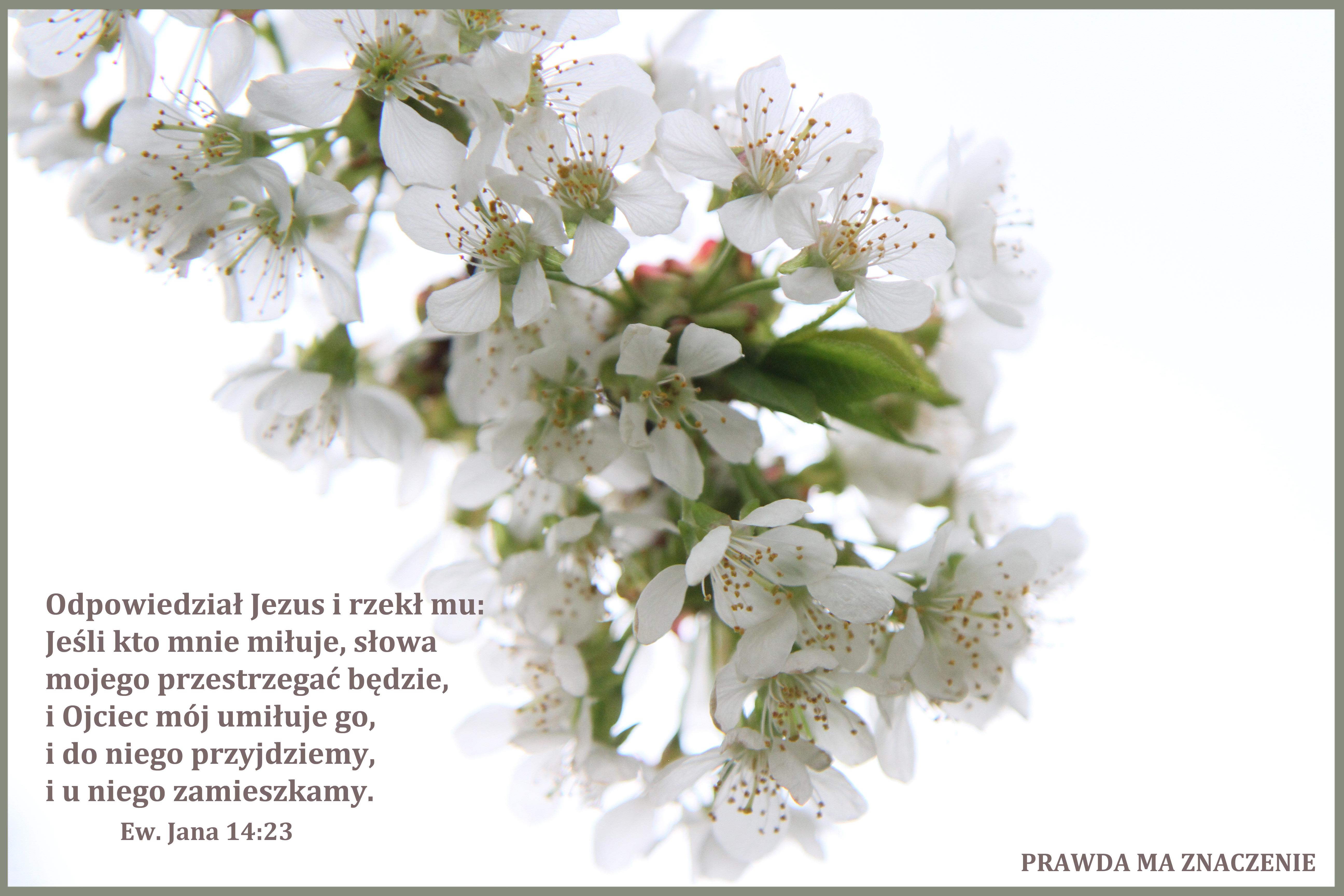 Jan 14: 23