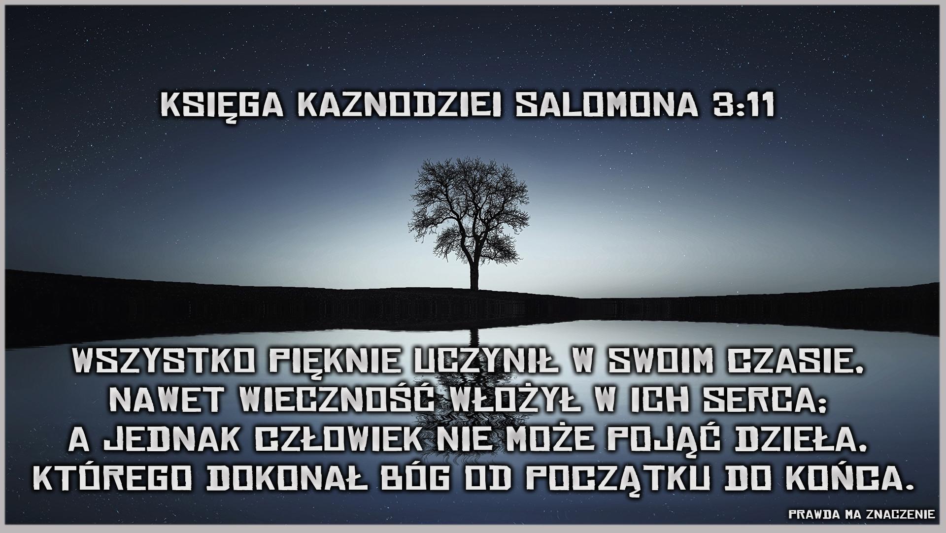 kaz salomona 3 11