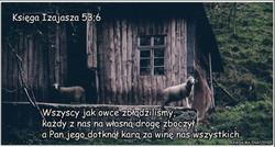 Księga_Izajasza_53_6