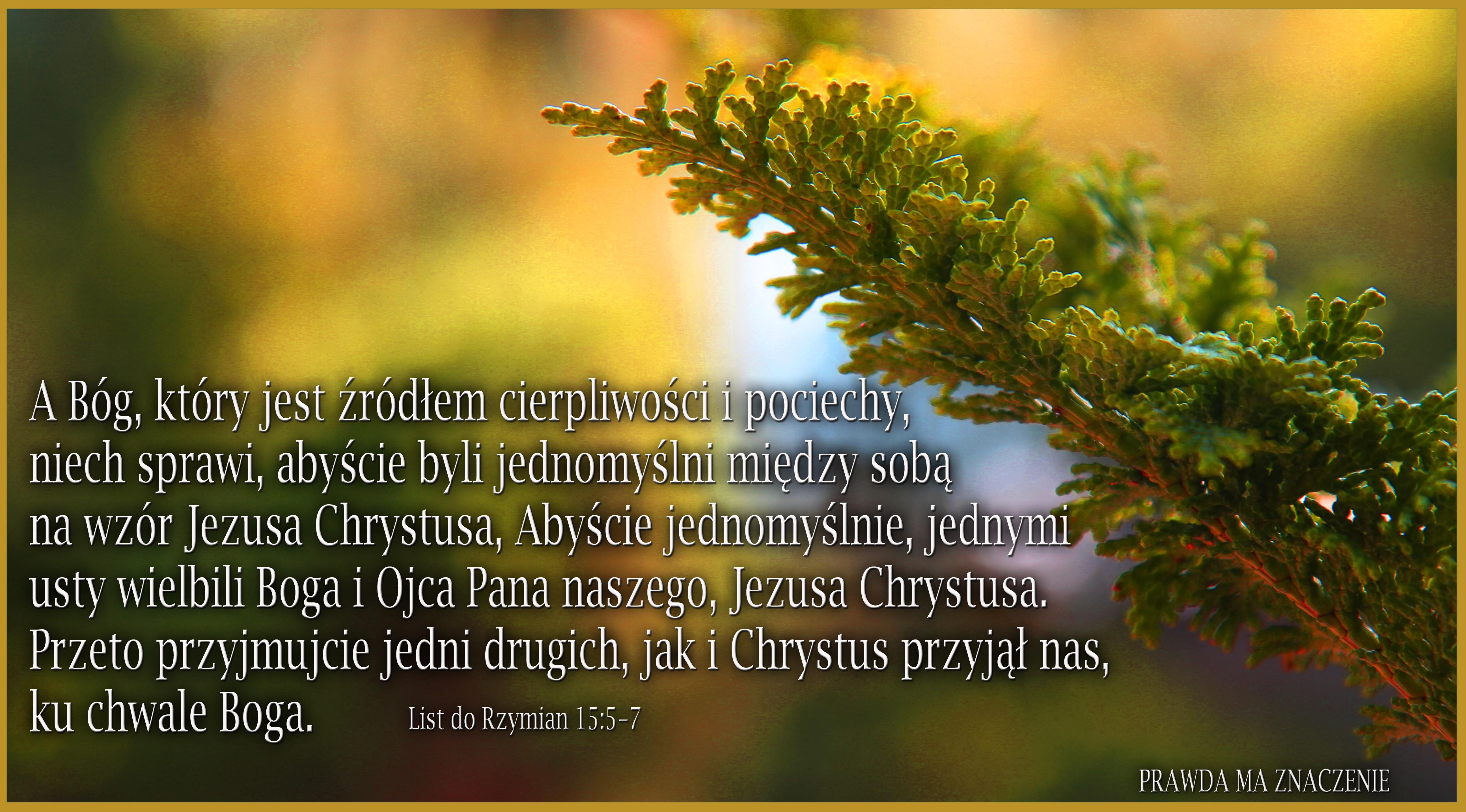 RZYM15 57