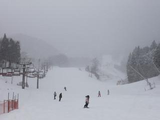 昨晩からの雪でサイコーです♪