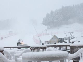 雪が降っております!