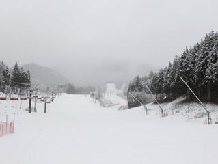 雪が降って降りますぞー!