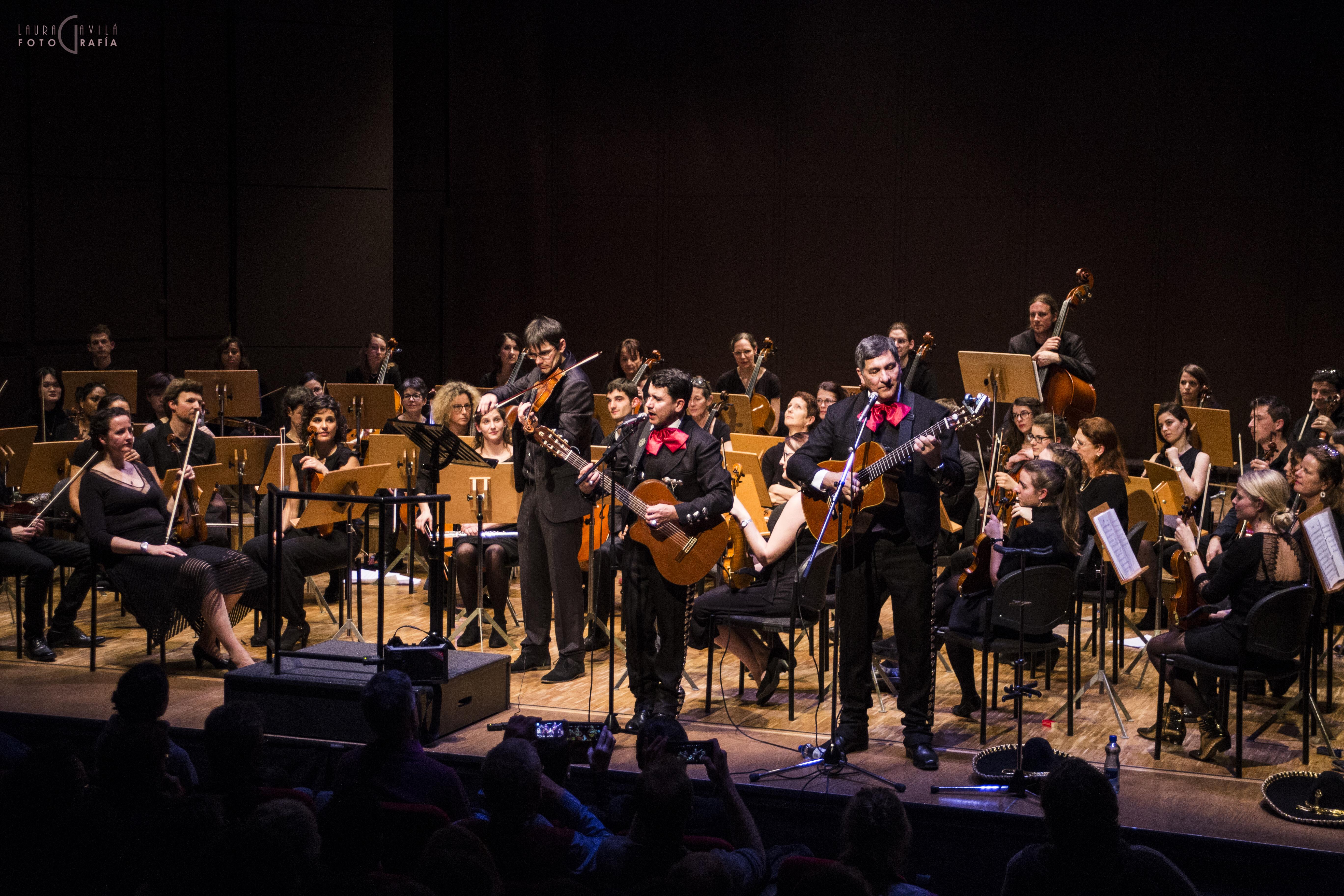 amati mariachi violon