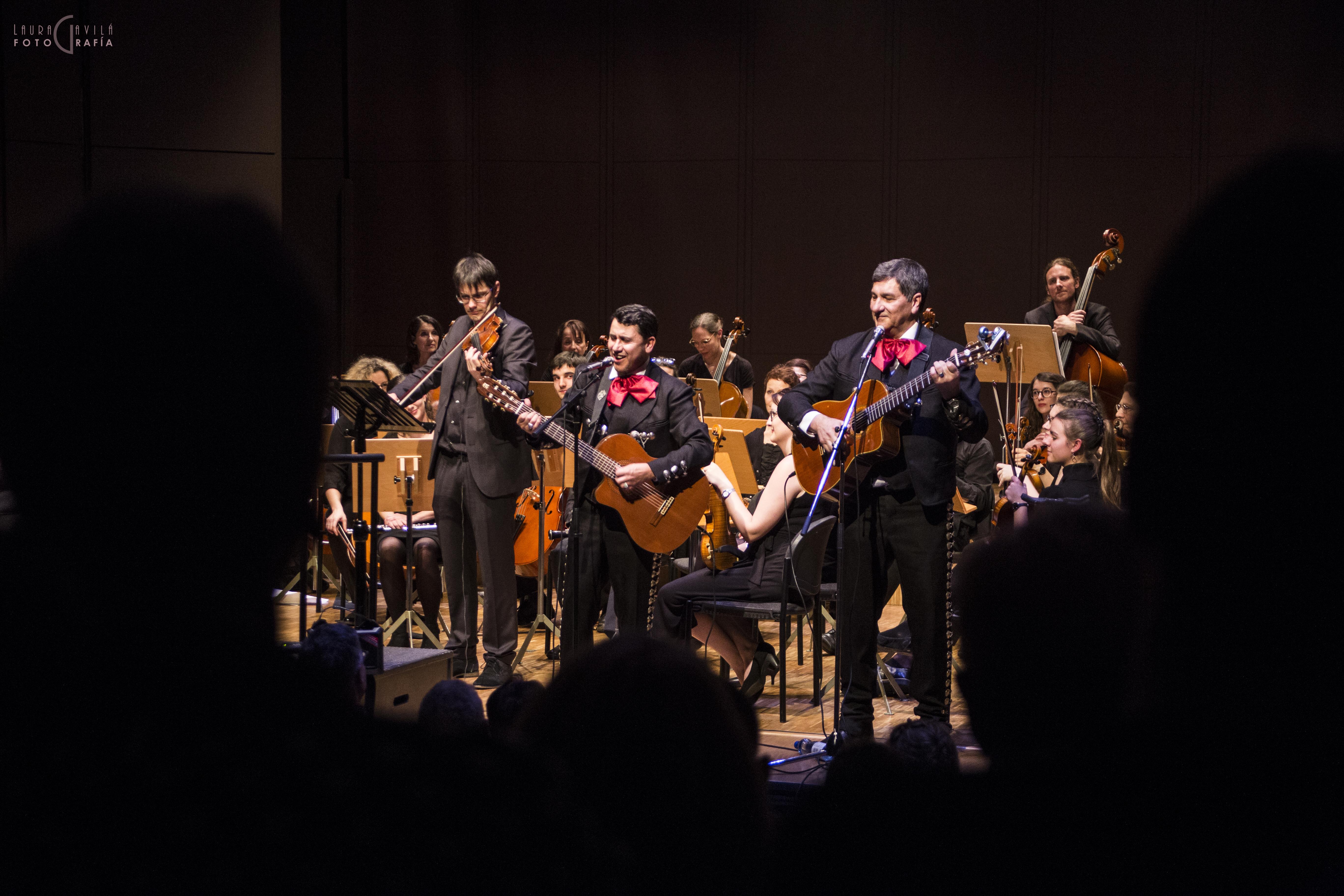 amati mariachi violon2