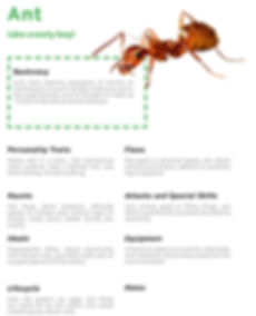 Characters and Insect Images-3.jpg