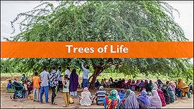 WV - Trees of Life PPT 490x276.jpg