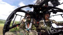 Nato Tiger Meet 2017