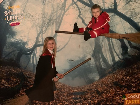 Harry Potter Super Fan - Annabelle