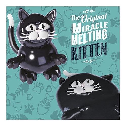 Miracle Melting Kitten