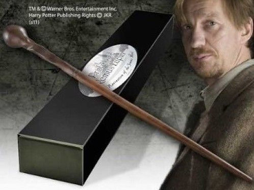 Professor Remus Lupin's Character Wand