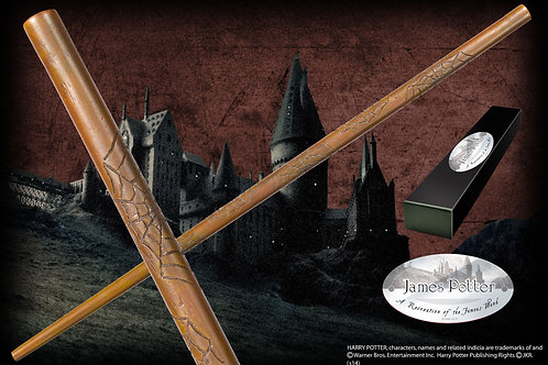 James Potter's Character Wand
