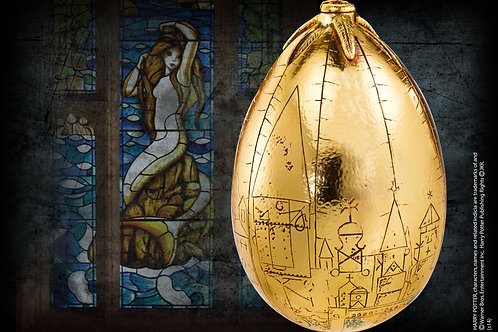 Harry Potter Golden Egg