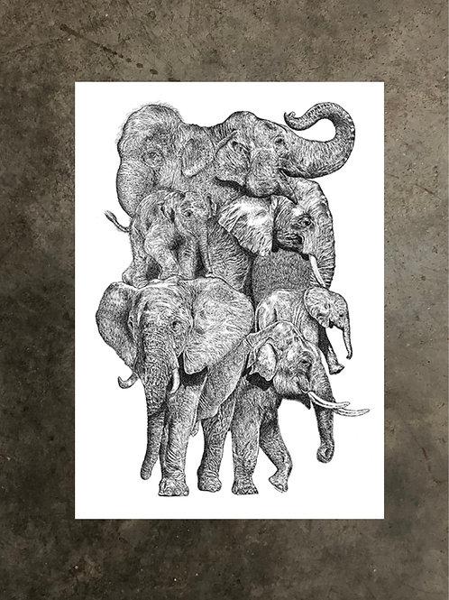 art prints by quan :: trunks