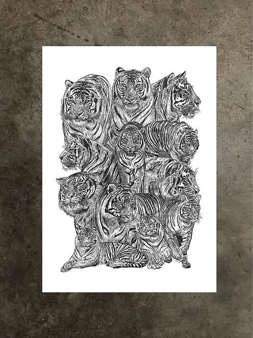 art prints by quan :: stripes