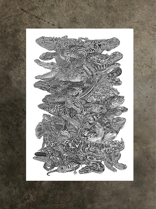 art prints by quan :: reptos