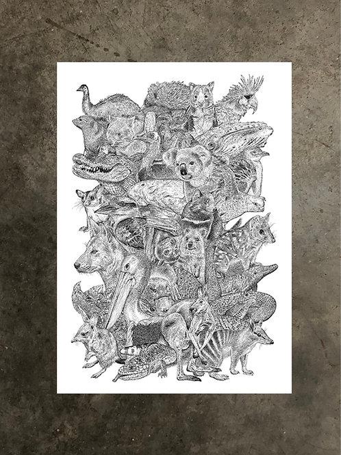 art prints by quan :: aussies