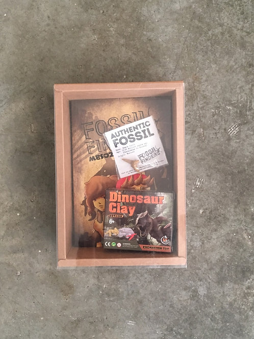 Fossil Finders Gift Box Set