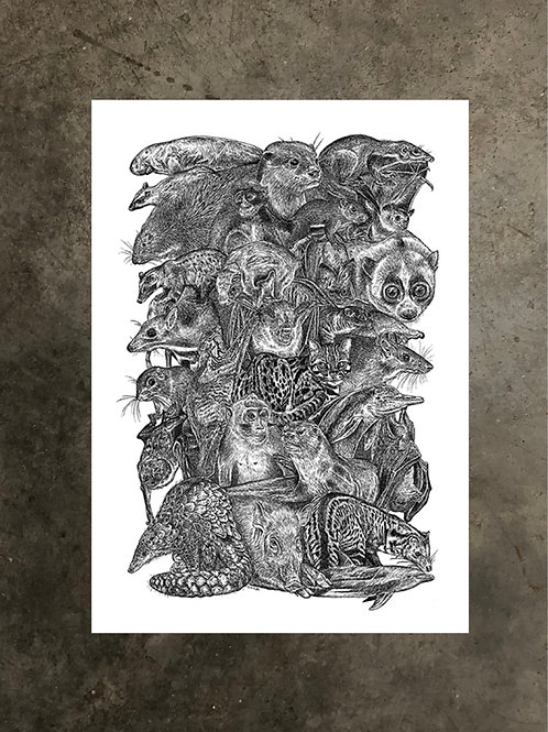 art prints by quan :: we are singapore (mammals)
