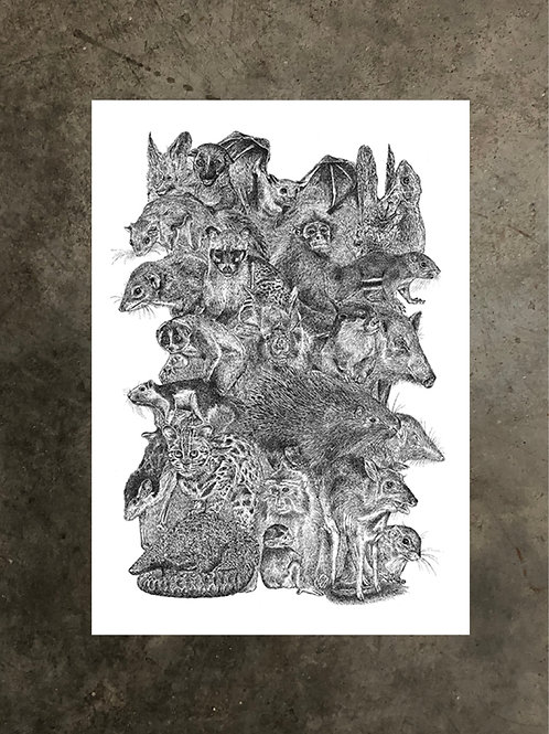 art prints by quan :: we are singapore