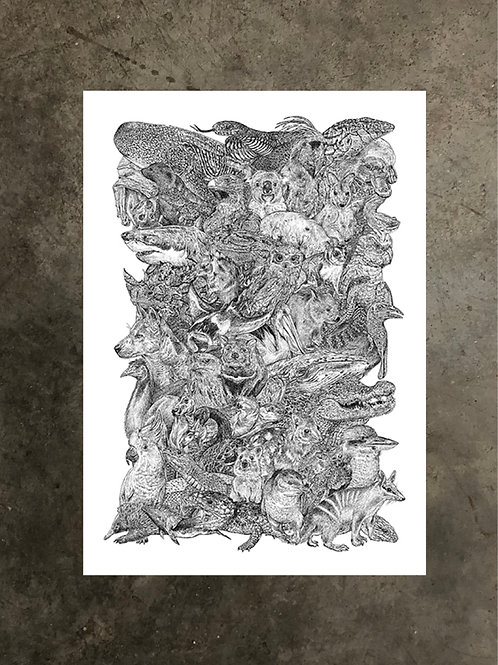 art prints by quan :: aussies +++