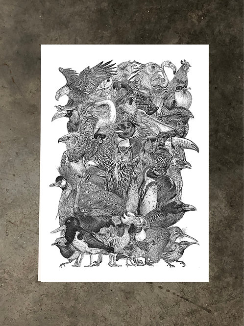 art prints by quan :: avian