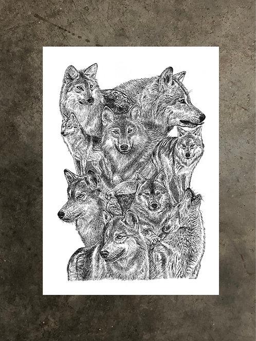 art prints by quan :: wolves