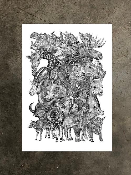 art prints by quan :: ungulate