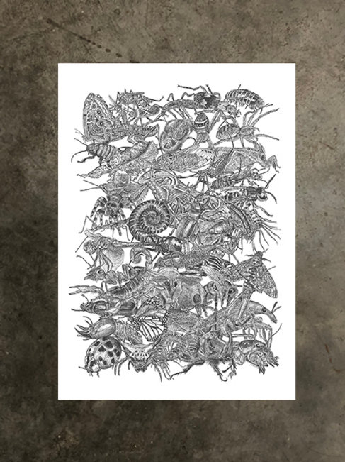 art prints by quan :: anthropod