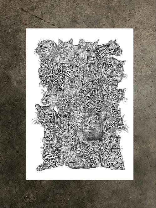 art prints by quan :: felidae