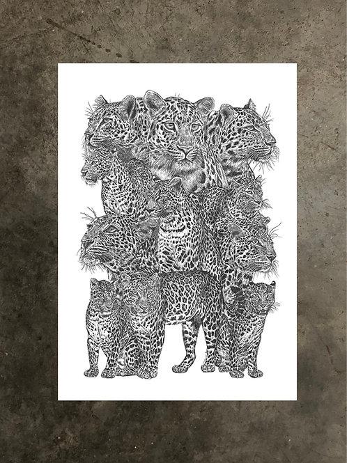 art prints by quan :: spots