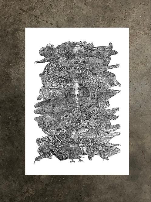 art prints by quan :: reptiles