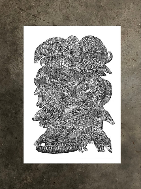 art prints by quan :: pangolin