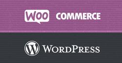wordpress-woocommerce-plugin-security