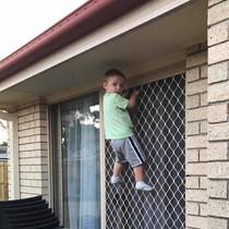 Bryce climbing door.jpg