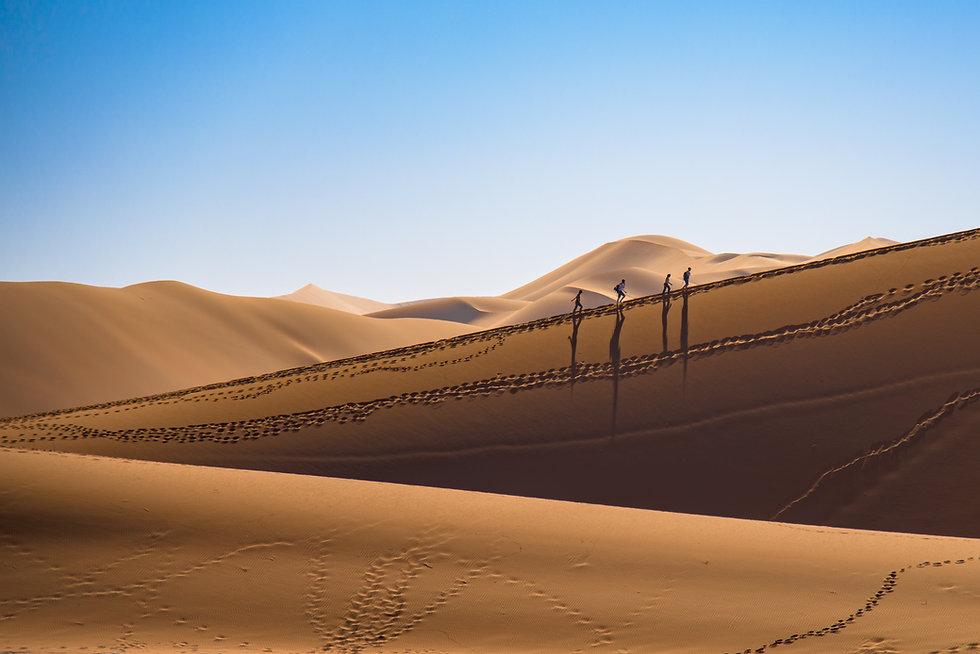 Sand Dunes in the Namibia Desert