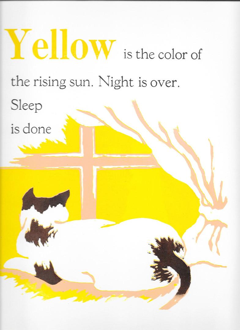 Rising sun with cat
