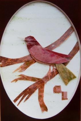 CL bird.jpg