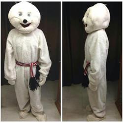 Mr Snowman