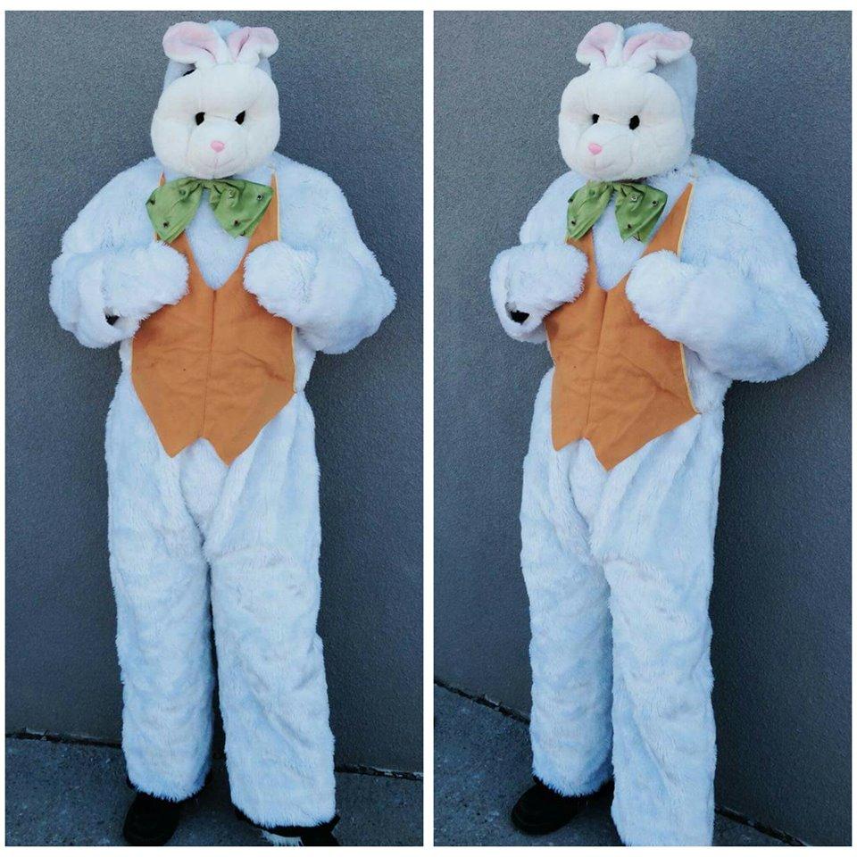 Bunny #10