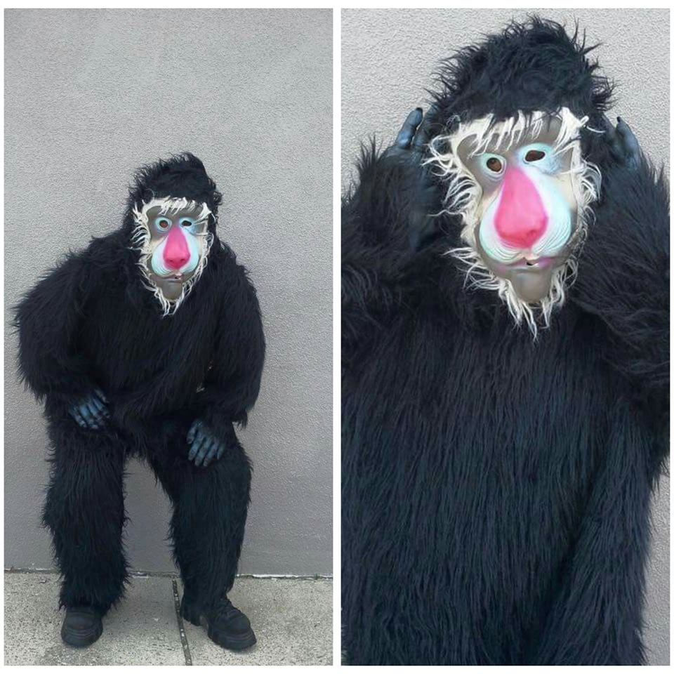 Black Baboon