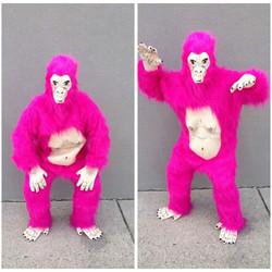 Pink Gorilla