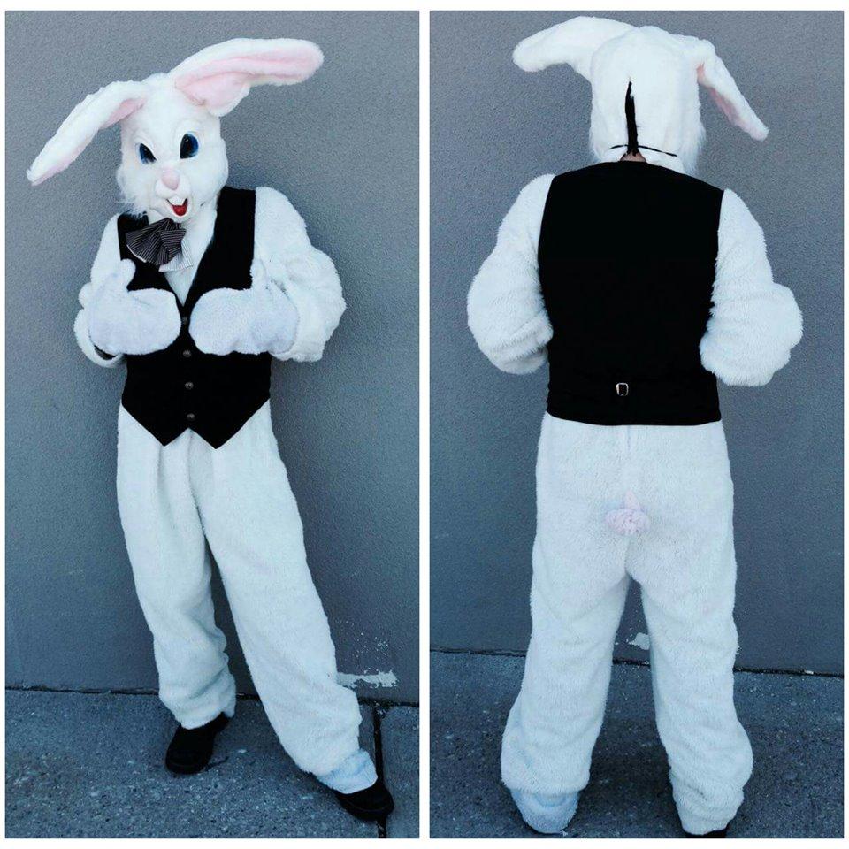Bunny #6