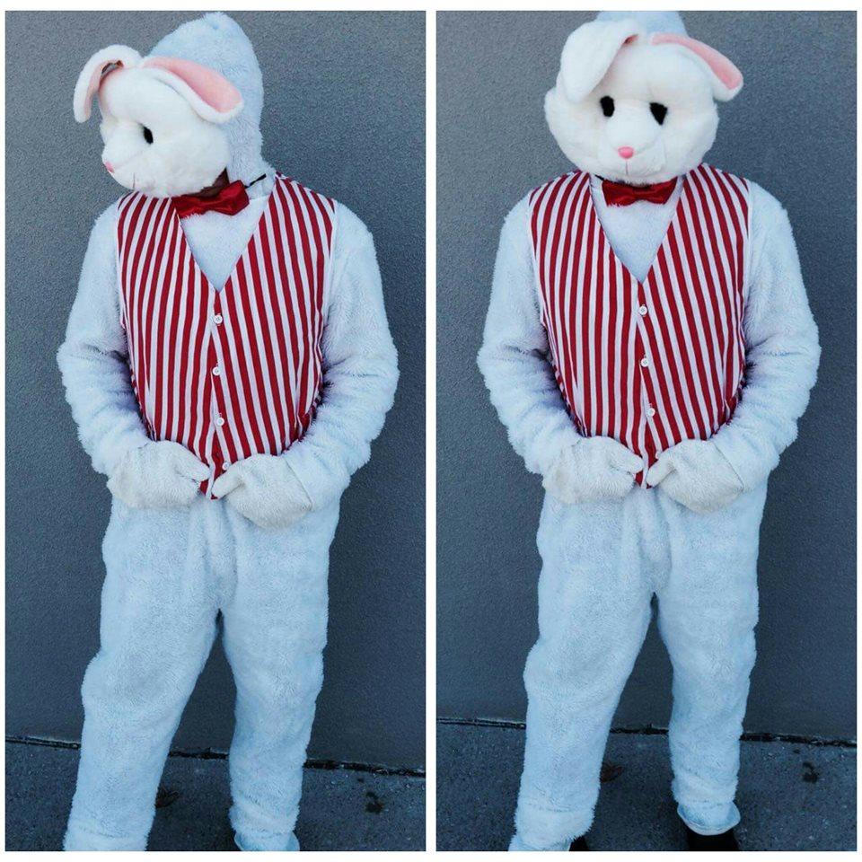 Bunny #7