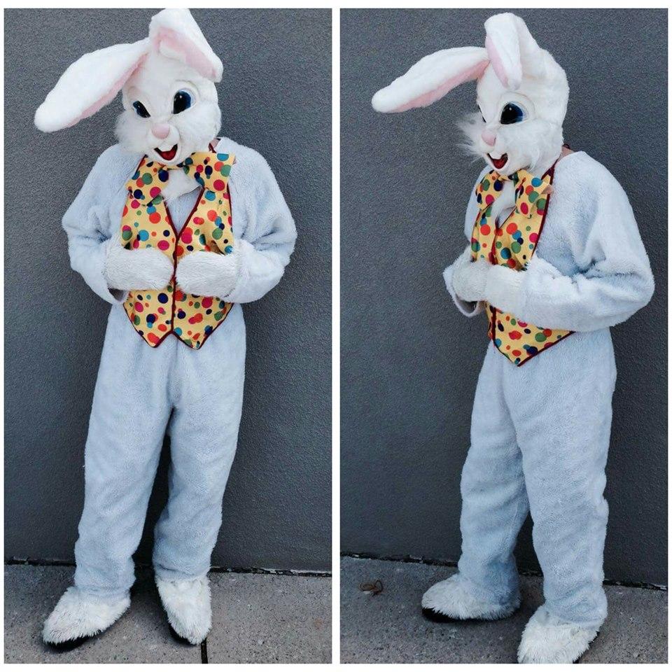 Bunny #12