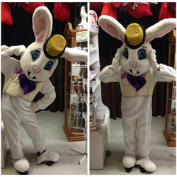 Bunny #14