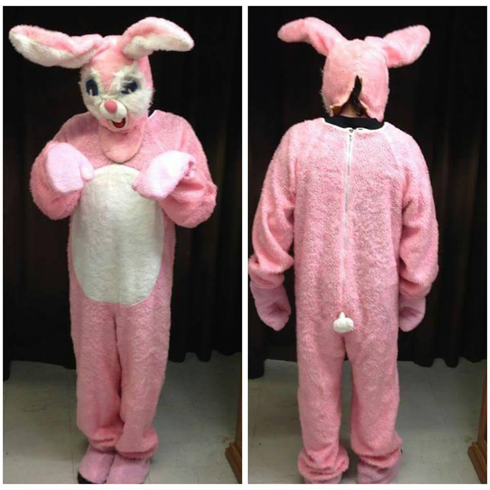 Bunny #8