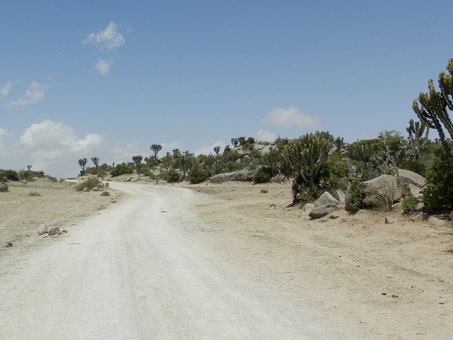 Case Study: Security Assessment for Organisation in Eritrea