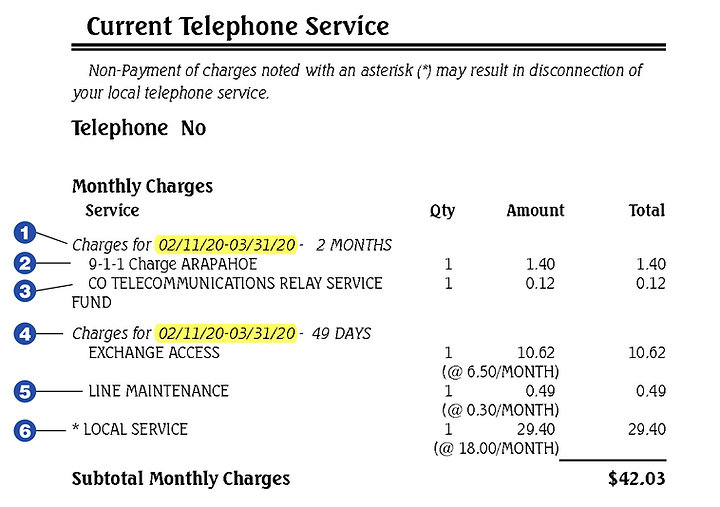 Bijou Bill-Explanation Telephone Service Charges Image